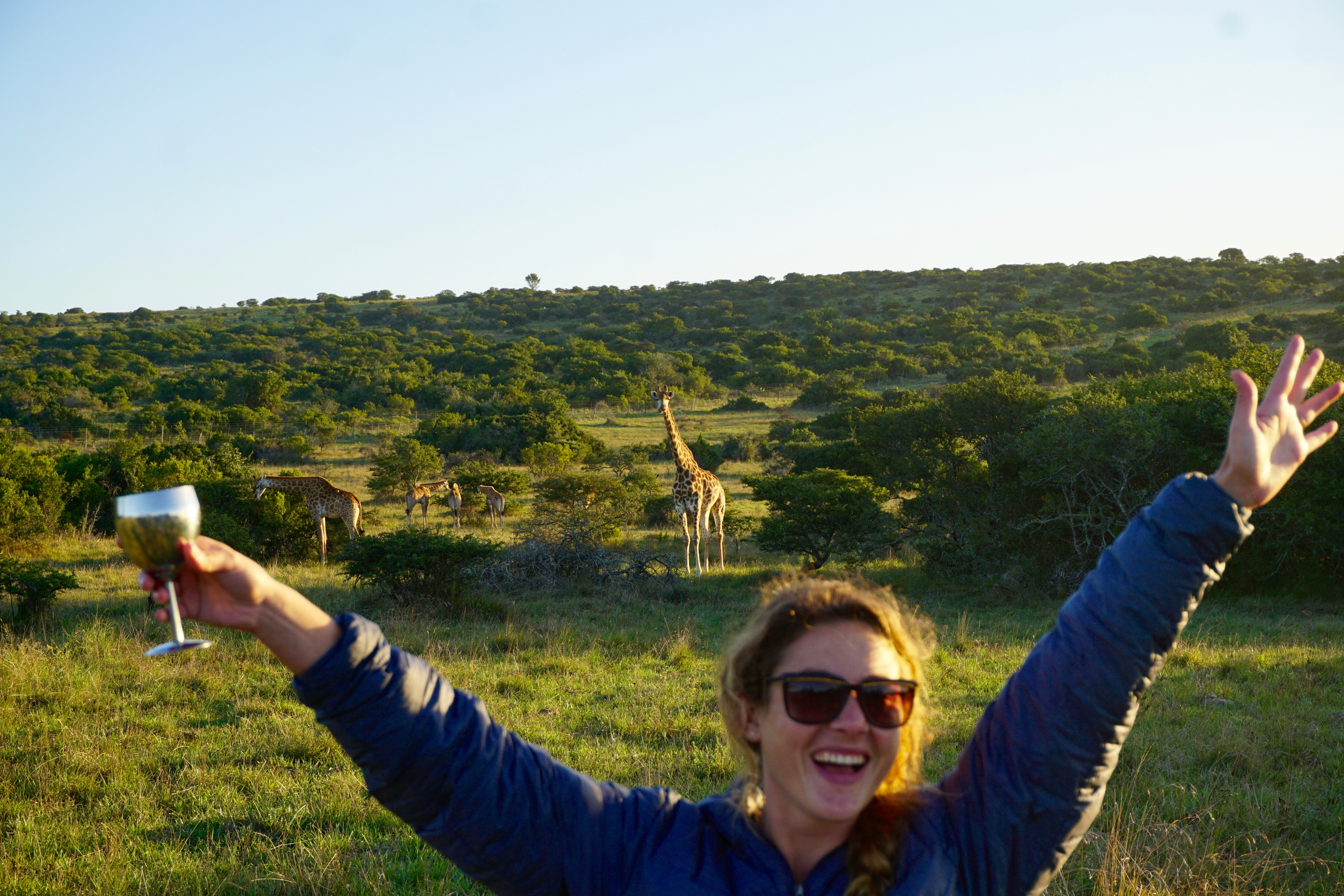 drinks with giraffes!