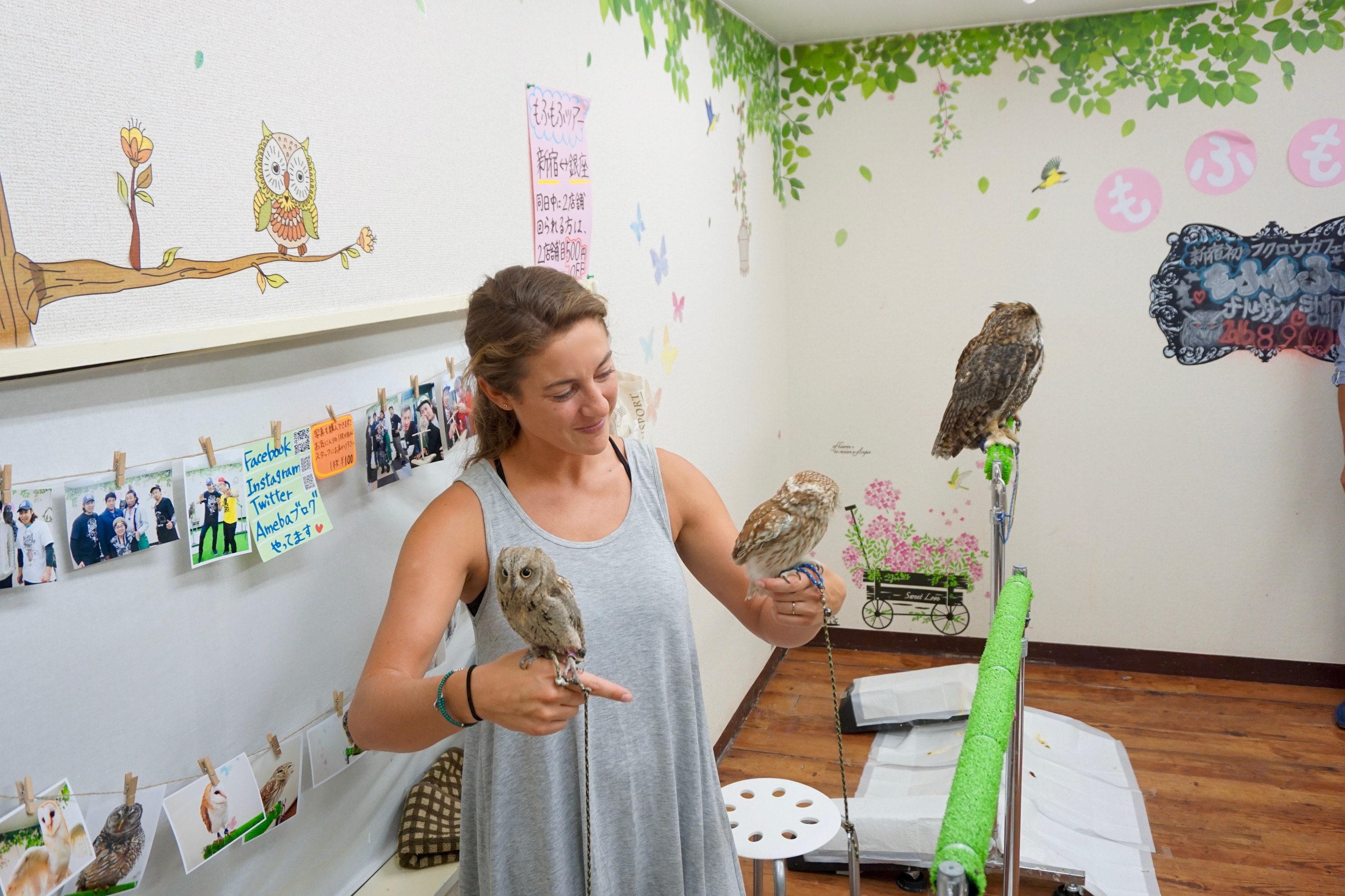 random visit with owls, because it's Tokyo