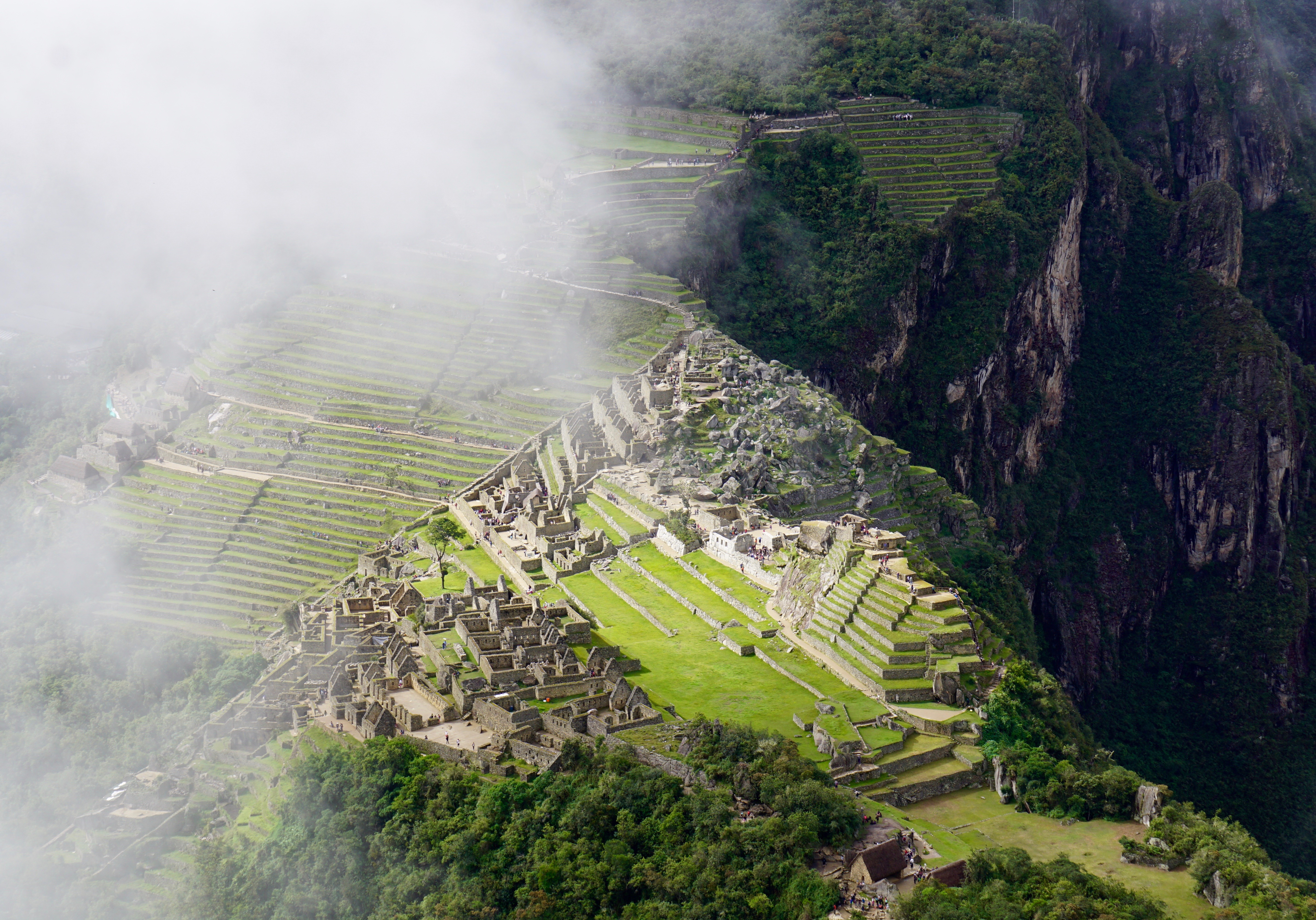 the view of Machu Picchu from above!